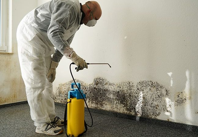 restoration business employee performing mold remediation