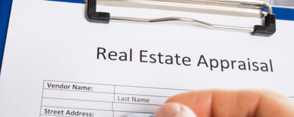 real estate appraisal company for sale in south carolina